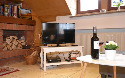 SAT TV und DVD Player